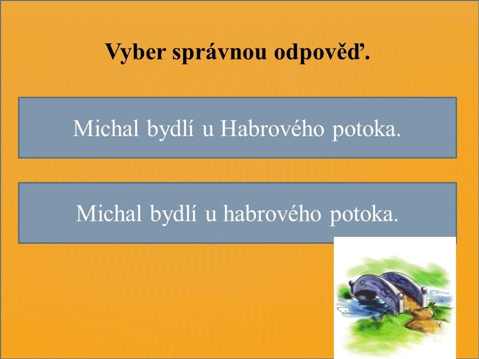 Michal bydlí u Habrového potoka. Michal bydlí u habrového potoka. Vyber správnou odpověď.