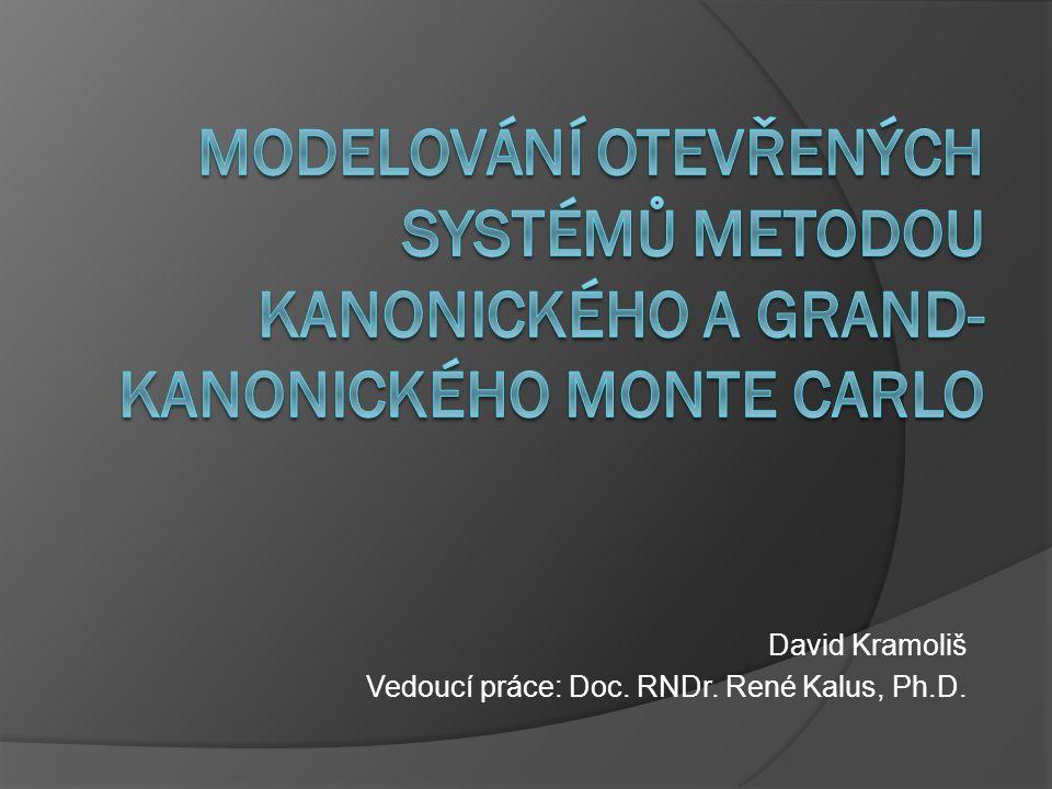 David Kramoliš Vedoucí práce: Doc. RNDr. René Kalus, Ph.D.
