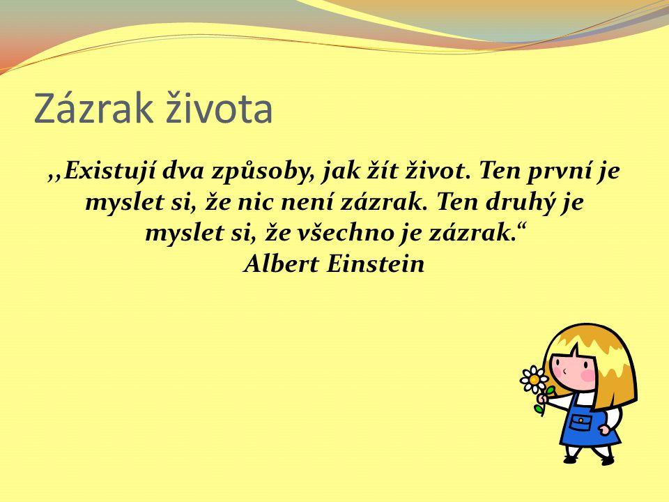 Zázrak života,,Existují dva způsoby, jak žít život.