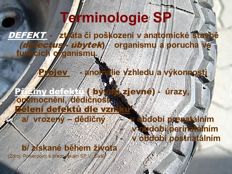 Terminologie SP DEFEKT - ztráta či poškození v anatomické stavbě (defectus - úbytek) organismu a porucha ve funkcích organismu.