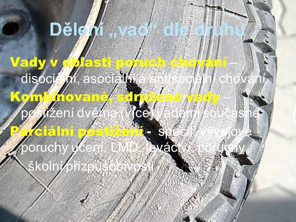 """Dělení """"vad dle druhu Vady v oblasti poruch chování – disociální, asociální a antisociální chování Kombinované, sdružené vady – postižení dvěma (více) vadami současné Parciální postižení - specif."""