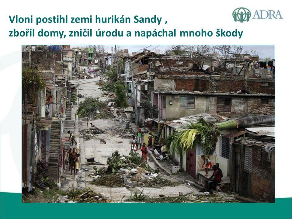 Vloni postihl zemi hurikán Sandy, zbořil domy, zničil úrodu a napáchal mnoho škody