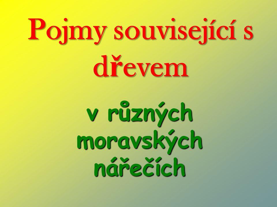 Pojmy související s d ř evem v různých moravských nářečích