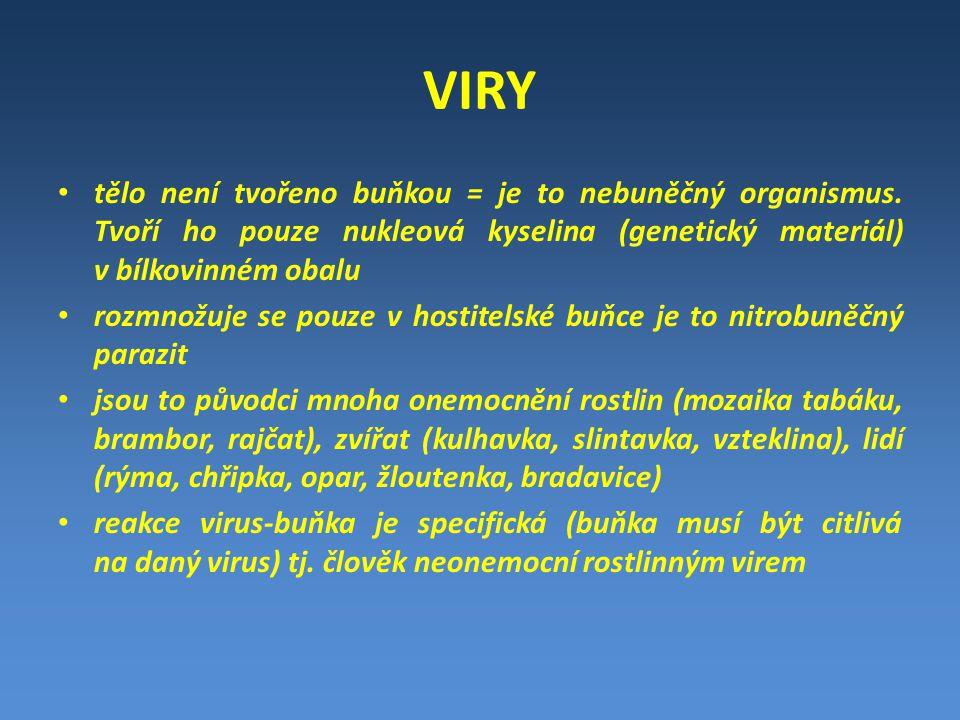VIRY tělo není tvořeno buňkou = je to nebuněčný organismus. Tvoří ho pouze nukleová kyselina (genetický materiál) v bílkovinném obalu rozmnožuje se po