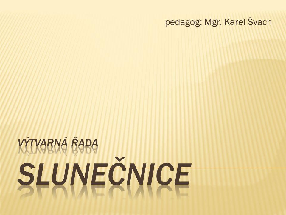 pedagog: Mgr. Karel Švach