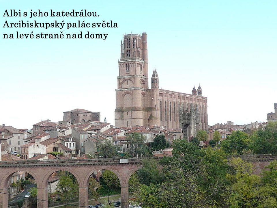 Katedrála Sainte-Cécile je nejvýznamnější sakrální stavbou v městě Albi na jihu Francie. Je sídlem arcibiskupa z Albi. Kostel zasvěcený sv. Cecilii je
