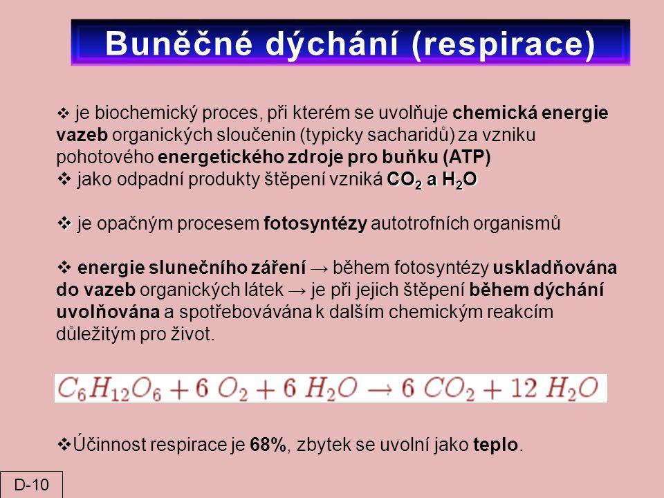  je biochemický proces, při kterém se uvolňuje chemická energie vazeb organických sloučenin (typicky sacharidů) za vzniku pohotového energetického zd
