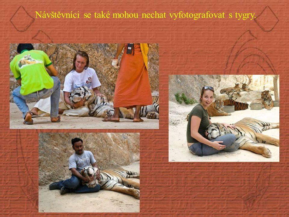 Návštěvníci se také mohou nechat vyfotografovat s tygry.