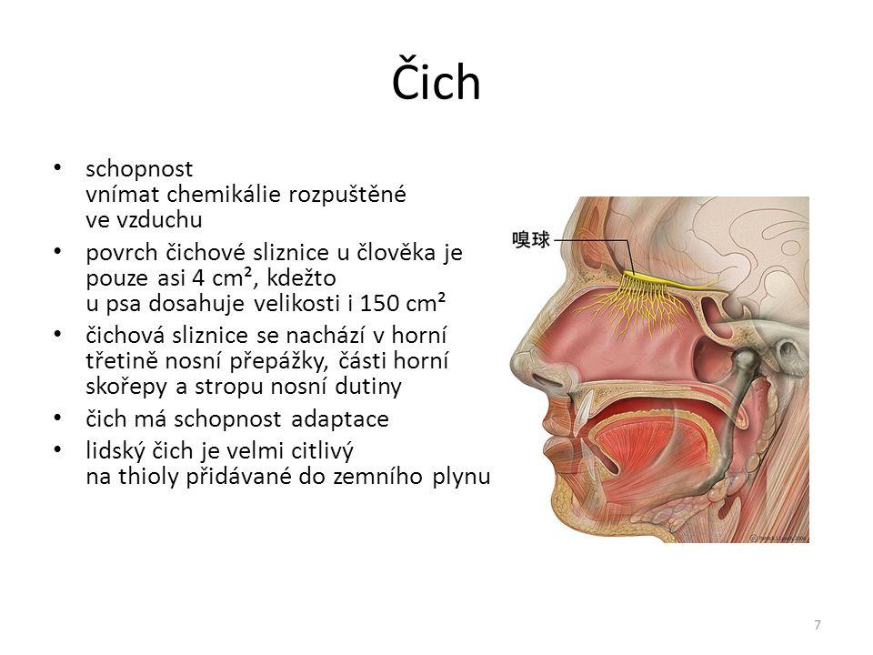 Čich schopnost vnímat chemikálie rozpuštěné ve vzduchu povrch čichové sliznice u člověka je pouze asi 4 cm², kdežto u psa dosahuje velikosti i 150 cm² čichová sliznice se nachází v horní třetině nosní přepážky, části horní skořepy a stropu nosní dutiny čich má schopnost adaptace lidský čich je velmi citlivý na thioly přidávané do zemního plynu 7