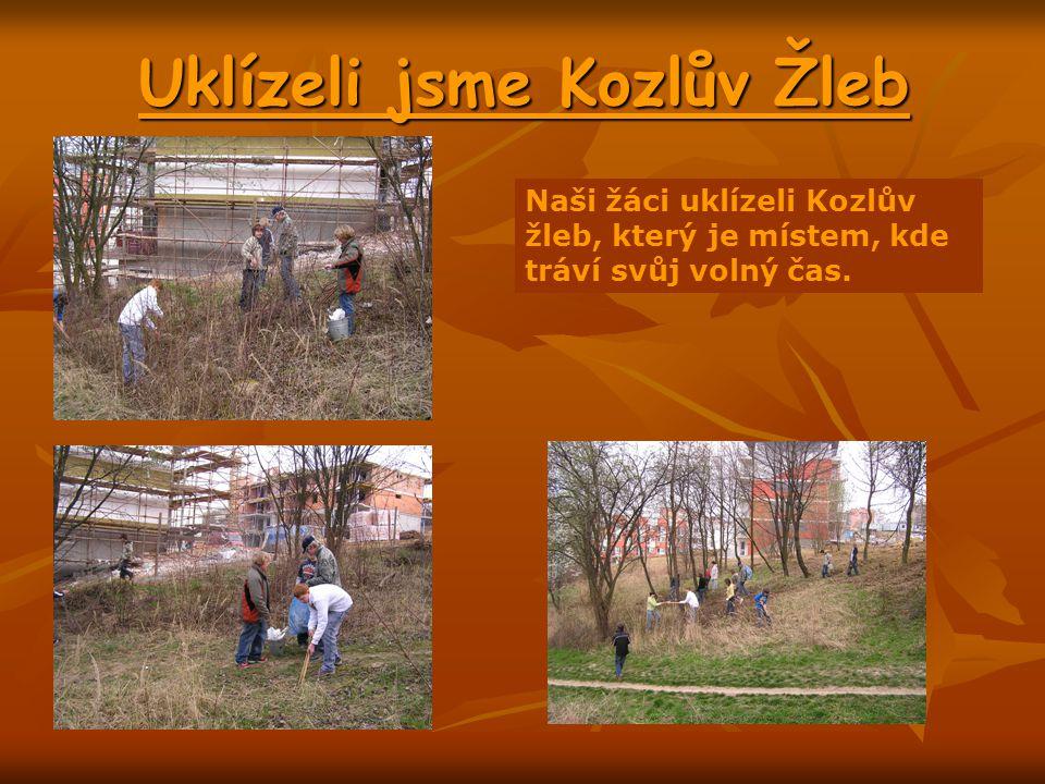 Uklízeli jsme Kozlův Žleb Naši žáci uklízeli Kozlův žleb, který je místem, kde tráví svůj volný čas.