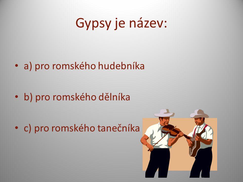 Gypsy je název: a) pro romského hudebníka b) pro romského dělníka c) pro romského tanečníka
