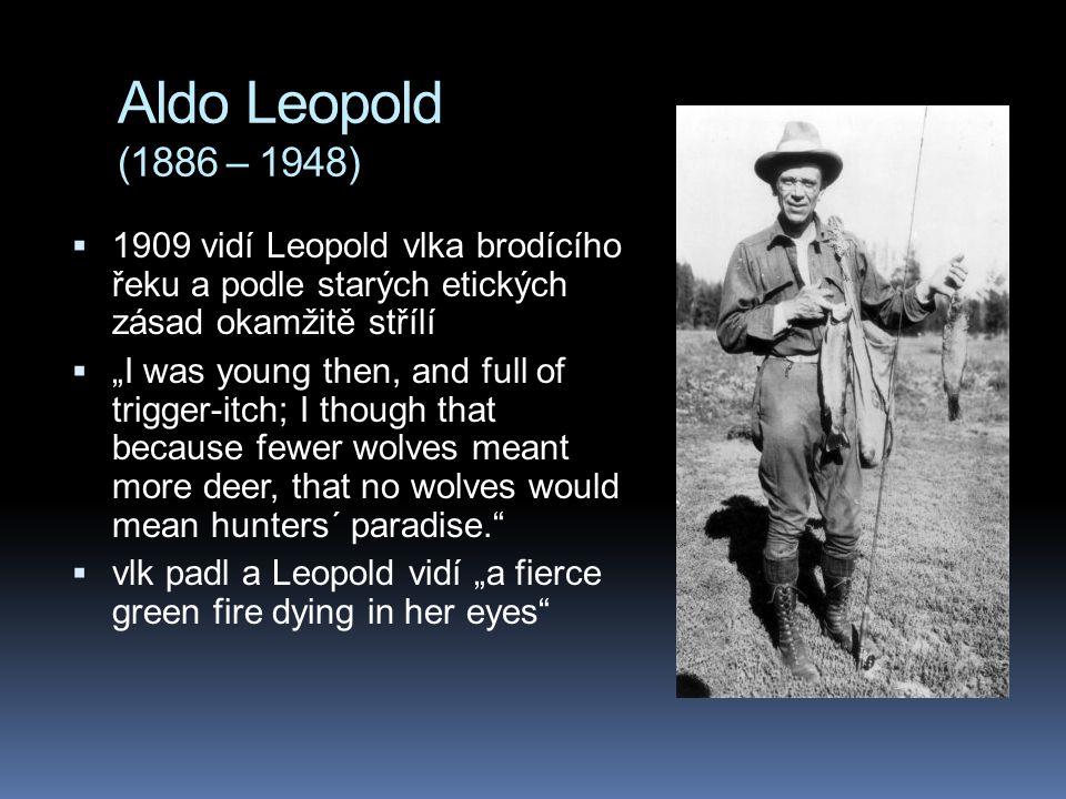 """Aldo Leopold (1886 – 1948)  1909 vidí Leopold vlka brodícího řeku a podle starých etických zásad okamžitě střílí  """"I was young then, and full of tri"""