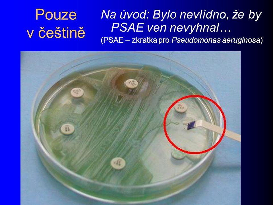 Pouze v češtině Na úvod: Bylo nevlídno, že by PSAE ven nevyhnal… (PSAE – zkratka pro Pseudomonas aeruginosa)
