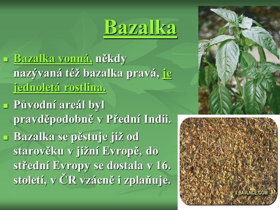 Bazalka Bazalka vonná, někdy nazývaná též bazalka pravá, je jednoletá rostlina.