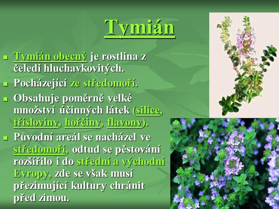 Tymián Tymián obecný je rostlina z čeledi hluchavkovitých.