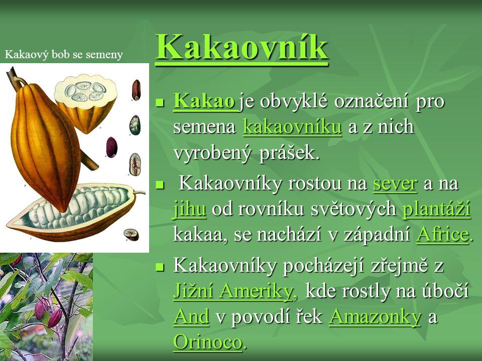 Kakaovník Kakao je obvyklé označení pro semena kakaovníku a z nich vyrobený prášek.