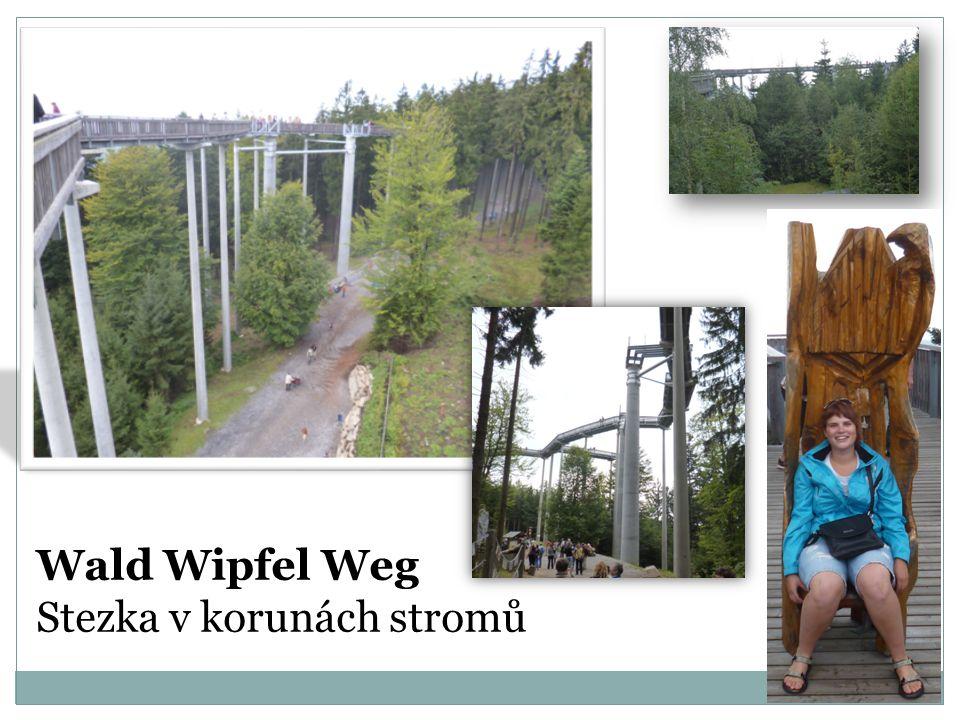 Wald Wipfel Weg Stezka v korunách stromů