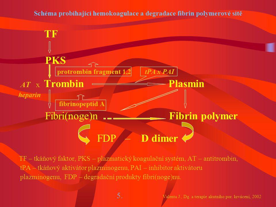 Schéma probíhající hemokoagulace a degradace fibrin polymerové sítě TF PKS protrombin fragment 1,2 tPA x PAI AT x Trombin Plasmin heparin fibrinopeptid A Fibri(noge)n Fibrin polymer FDP – D dimer TF – tkáňový faktor, PKS – plazmatický koagulační systém, AT – antitrombin, tPA – tkáňový aktivátor plazminogenu, PAI – inhibitor aktivátoru plazminogenu, FDP – degradační produkty fibri(noge)nu.