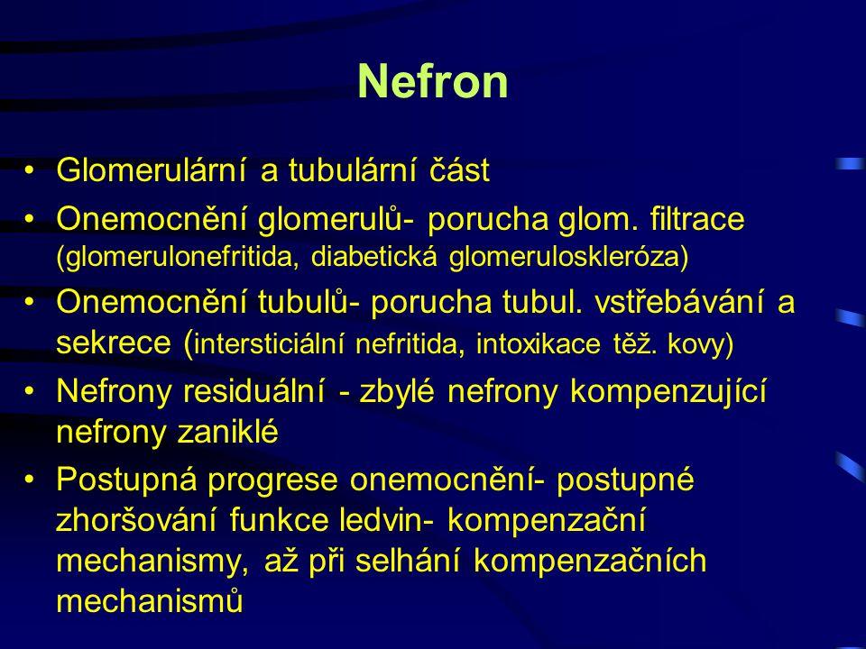 Nefron Glomerulární a tubulární část Onemocnění glomerulů- porucha glom. filtrace (glomerulonefritida, diabetická glomeruloskleróza) Onemocnění tubulů