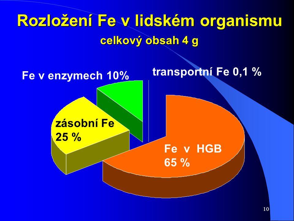 10 Rozložení Fe v lidském organismu celkový obsah 4 g Fe v HGB 65 % zásobní Fe 25 % Fe v enzymech 10% transportní Fe 0,1 %