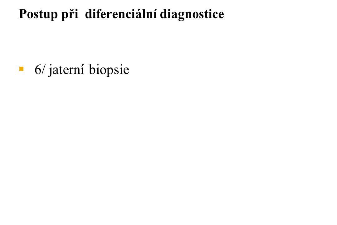  6/ jaterní biopsie Postup při diferenciální diagnostice