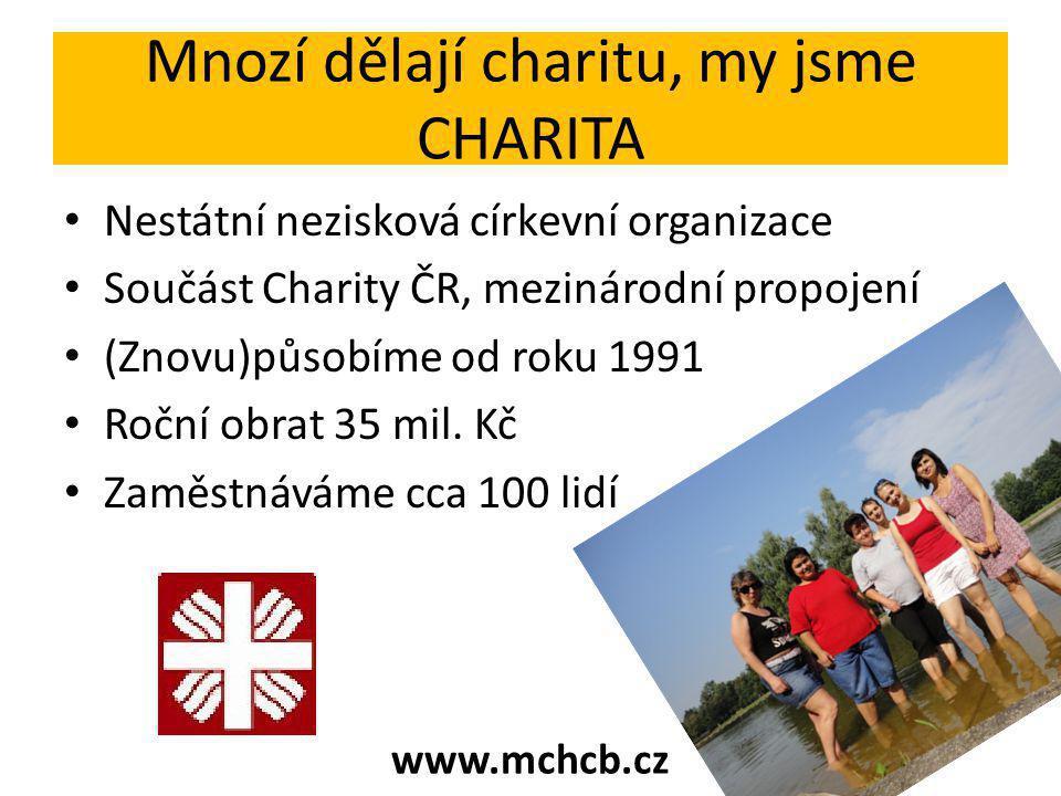 Mnozí dělají charitu, my jsme CHARITA Nestátní nezisková církevní organizace Součást Charity ČR, mezinárodní propojení (Znovu)působíme od roku 1991 Roční obrat 35 mil.