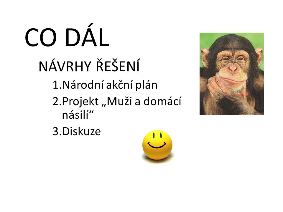 """CO DÁL NÁVRHY ŘEŠENÍ 1.Národní akční plán 2.Projekt """"Muži a domácí násilí"""" 3.Diskuze"""