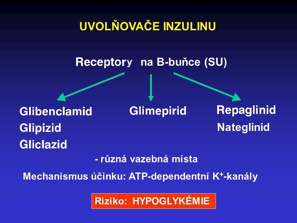 UVOLŇOVAČE INZULINU y na B-buňce (SU) - různá vazebná místa Mechanismus účinku: ATP-dependentní K + -kanály Nateglinid Riziko: HYPOGLYKÉMIE