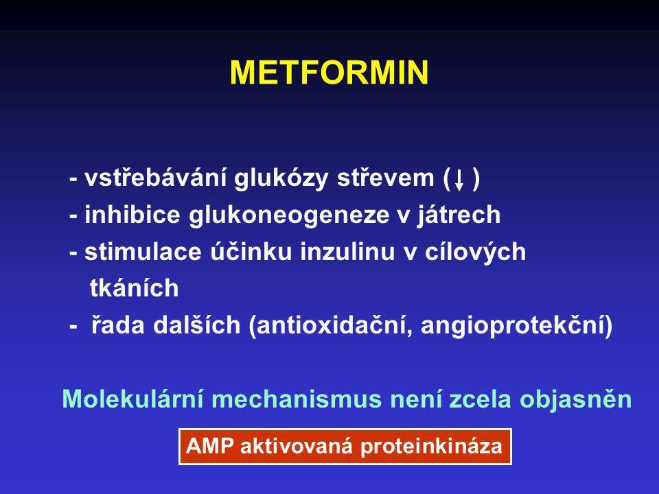 METFORMIN - vstřebávání glukózy střevem ( ) - inhibice glukoneogeneze v játrech - stimulace účinku inzulinu v cílových tkáních - řada dalších (antioxi