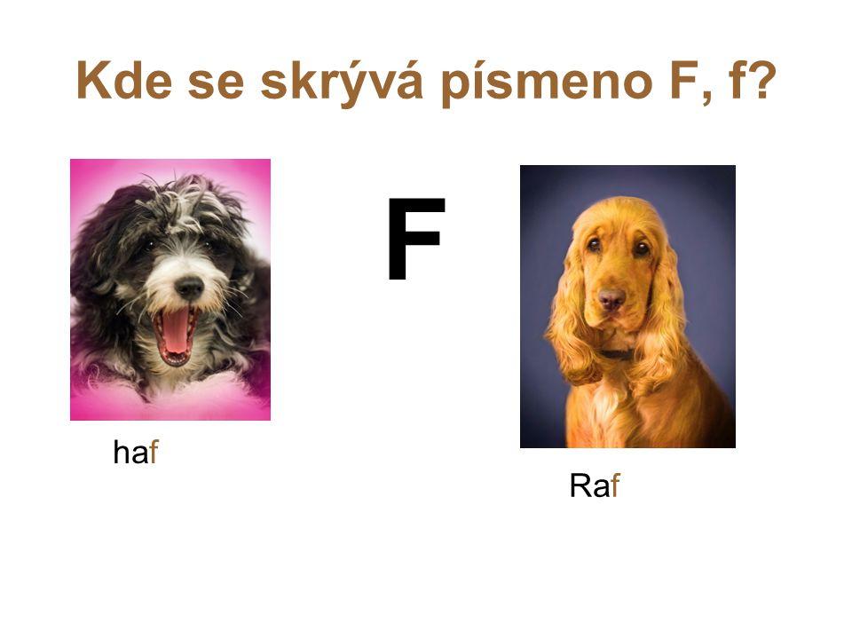 Kde se skrývá písmeno F, f? F haf Raf