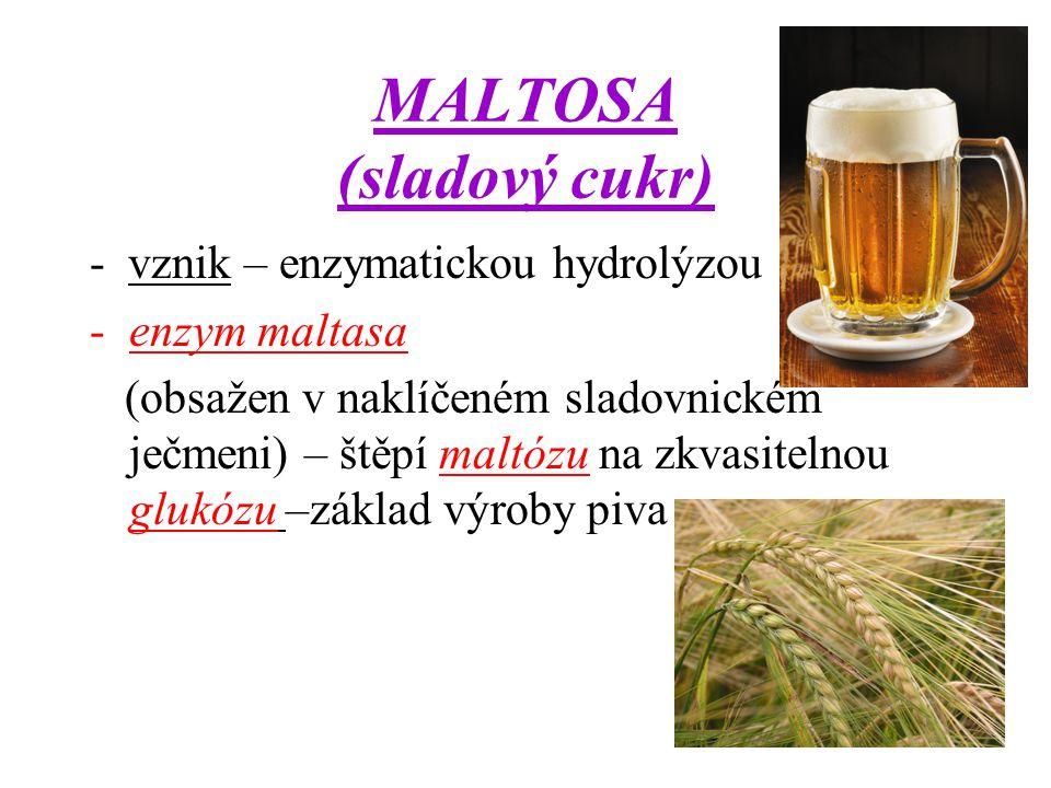 MALTOSA (sladový cukr) - vznik – enzymatickou hydrolýzou -enzym maltasa (obsažen v naklíčeném sladovnickém ječmeni) – štěpí maltózu na zkvasitelnou glukózu –základ výroby piva