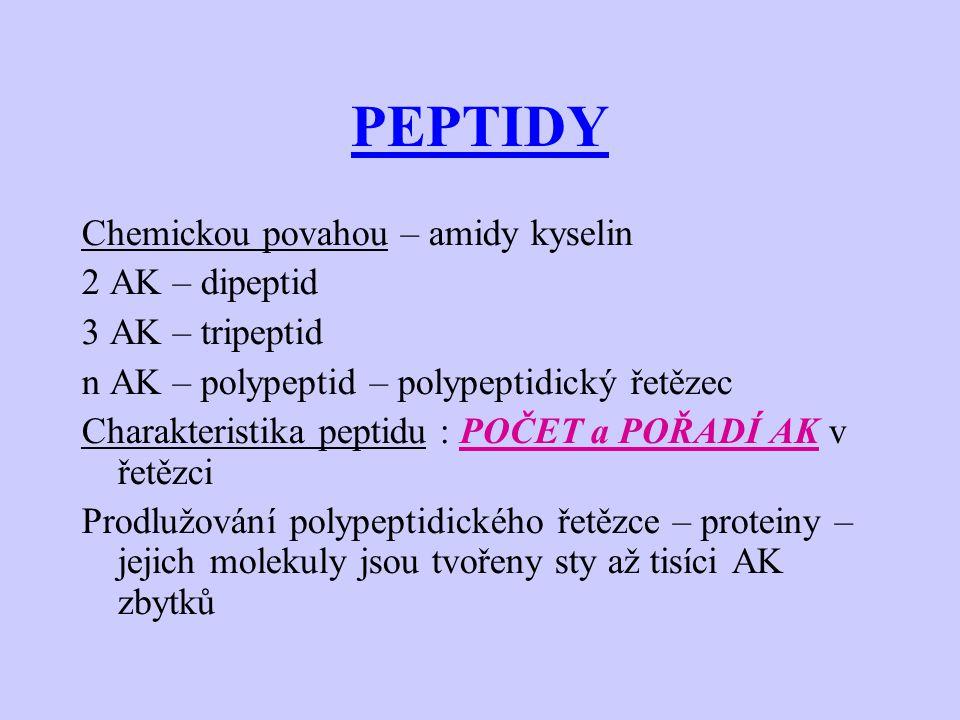 PEPTIDY Chemickou povahou – amidy kyselin 2 AK – dipeptid 3 AK – tripeptid n AK – polypeptid – polypeptidický řetězec Charakteristika peptidu : POČET