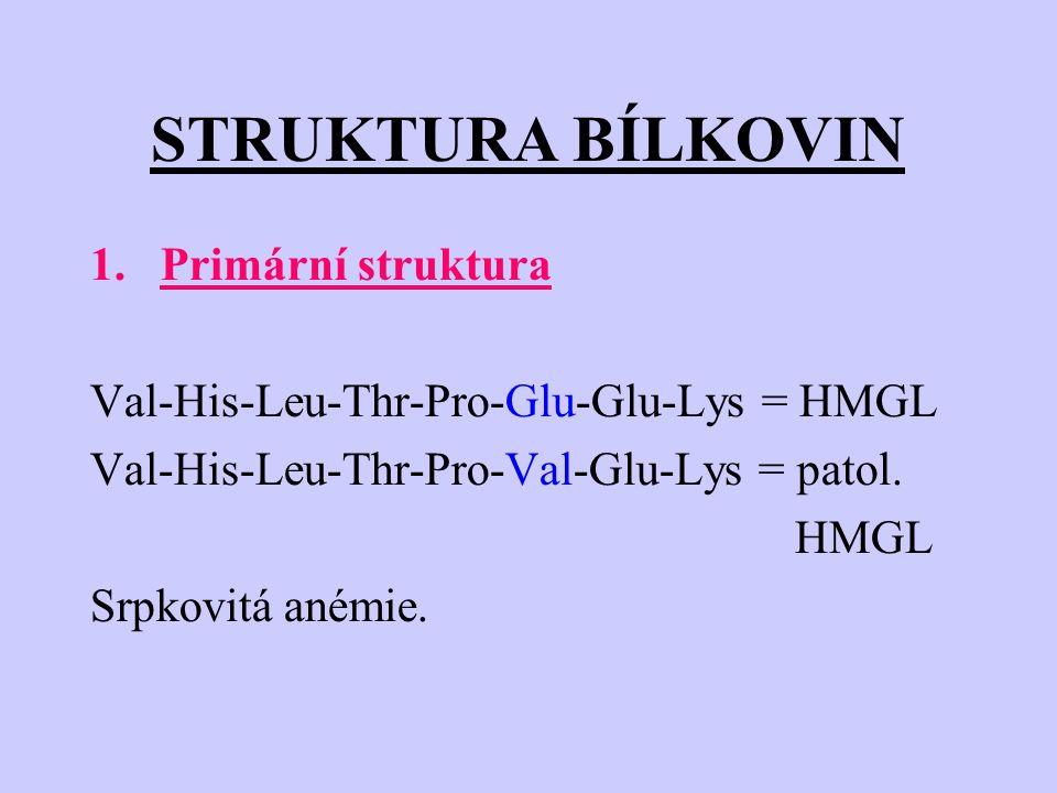 STRUKTURA BÍLKOVIN 1.Primární struktura Val-His-Leu-Thr-Pro-Glu-Glu-Lys = HMGL Val-His-Leu-Thr-Pro-Val-Glu-Lys = patol. HMGL Srpkovitá anémie.