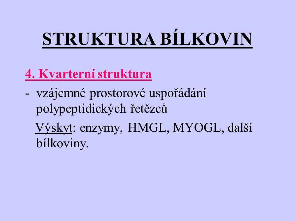STRUKTURA BÍLKOVIN 4. Kvarterní struktura -vzájemné prostorové uspořádání polypeptidických řetězců Výskyt: enzymy, HMGL, MYOGL, další bílkoviny.