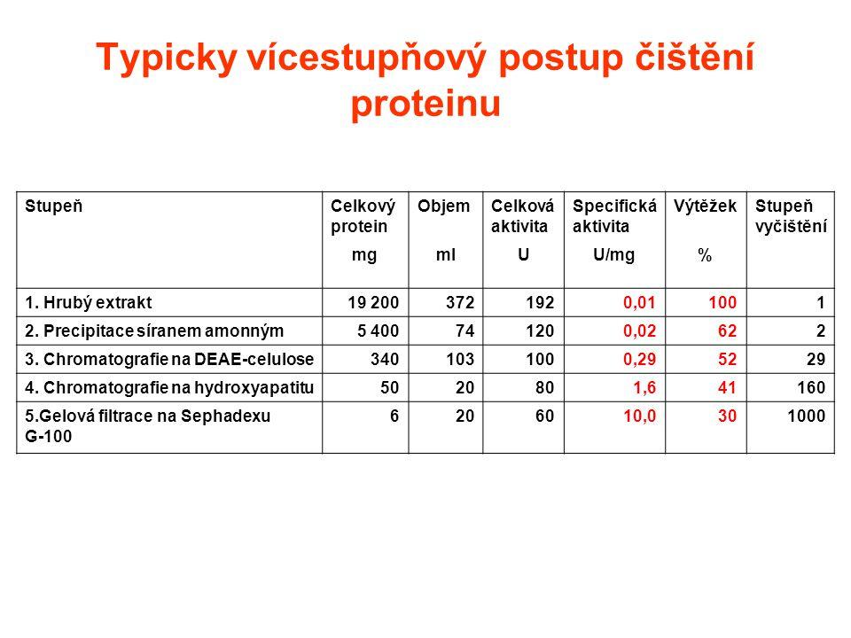Typicky vícestupňový postup čištění proteinu StupeňCelkový protein ObjemCelková aktivita Specifická aktivita VýtěžekStupeň vyčištění mgmlUU/mg% 1. Hru