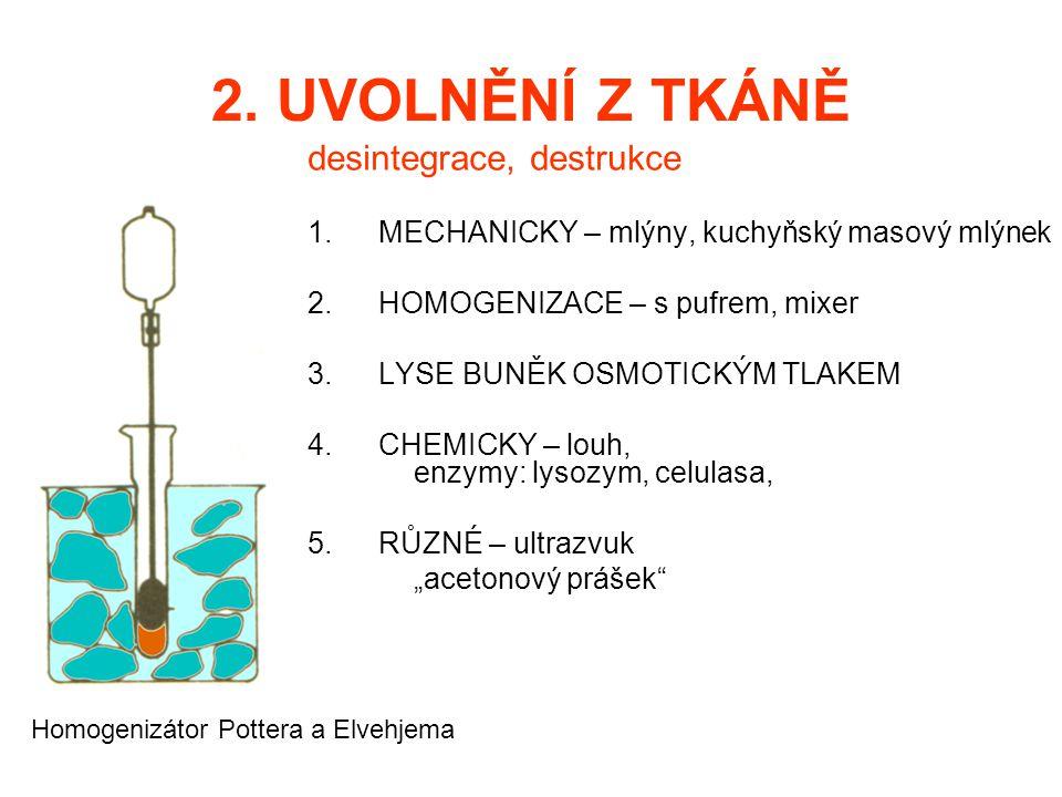 2. UVOLNĚNÍ Z TKÁNĚ desintegrace, destrukce 1.MECHANICKY – mlýny, kuchyňský masový mlýnek 2.HOMOGENIZACE – s pufrem, mixer 3.LYSE BUNĚK OSMOTICKÝM TLA