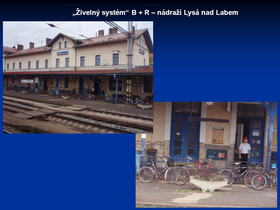 """""""Živelný systém"""" B + R – nádraží Lysá nad Labem"""