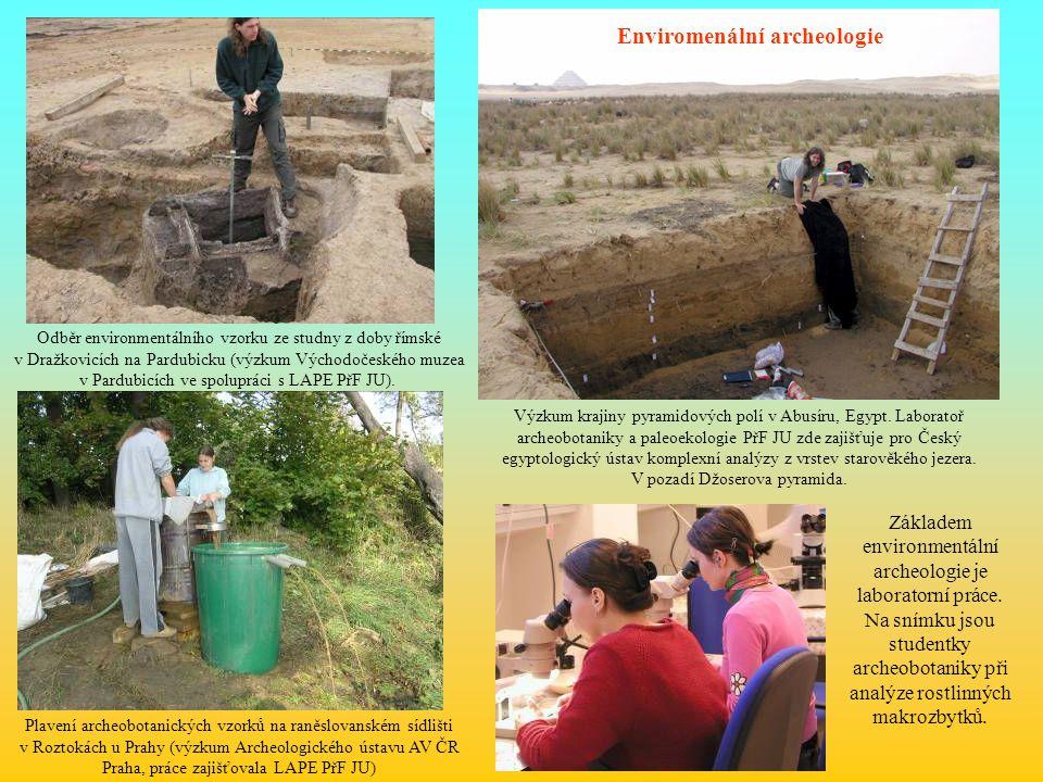 Odběr environmentálního vzorku ze studny z doby římské v Dražkovicích na Pardubicku (výzkum Východočeského muzea v Pardubicích ve spolupráci s LAPE Př