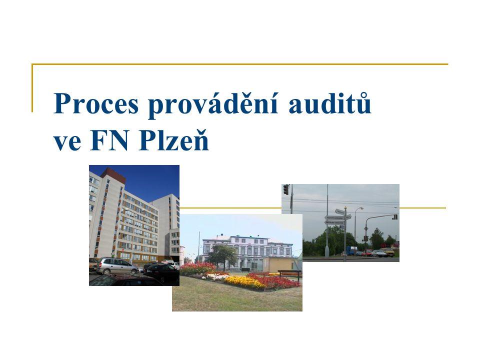 Proces provádění auditů ve FN Plzeň