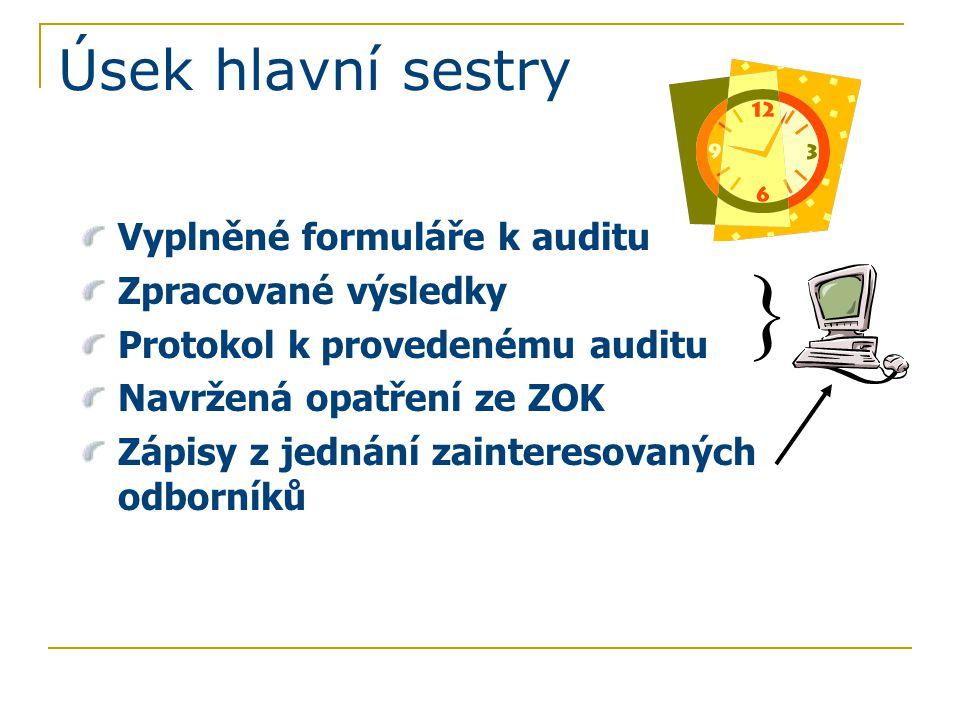 Úsek hlavní sestry Vyplněné formuláře k auditu Zpracované výsledky Protokol k provedenému auditu Navržená opatření ze ZOK Zápisy z jednání zainteresov