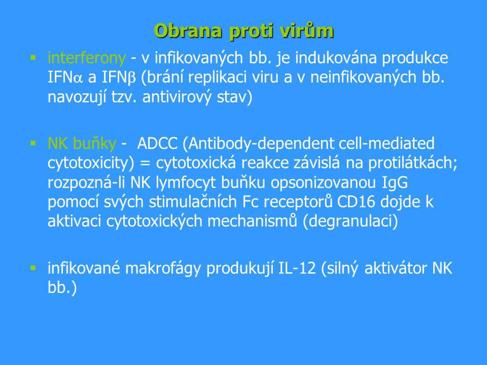  interferony - v infikovaných bb. je indukována produkce IFN  a IFN  (brání replikaci viru a v neinfikovaných bb. navozují tzv. antivirový stav) 