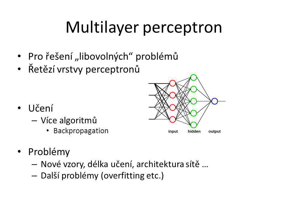 Jiné architektury SOM (Kohonenova mapa) ART 1, ART 2 Flexible Neural Tree
