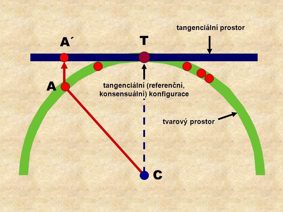 T C A A´ tangenciální prostor tvarový prostor tangenciální (referenční, konsensuální) konfigurace
