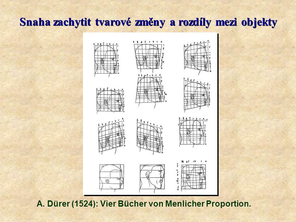 Snaha zachytit tvarové změny a rozdíly mezi objekty A.