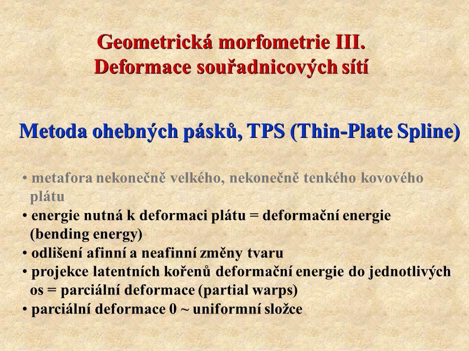 energie nutná k deformaci plátu = deformační energie (bending energy) odlišení afinní a neafinní změny tvaru projekce latentních kořenů deformační energie do jednotlivých os = parciální deformace (partial warps) parciální deformace 0 ~ uniformní složce Geometrická morfometrie III.