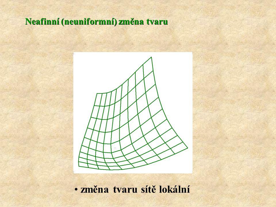 Neafinní (neuniformní) změna tvaru změna tvaru sítě lokální