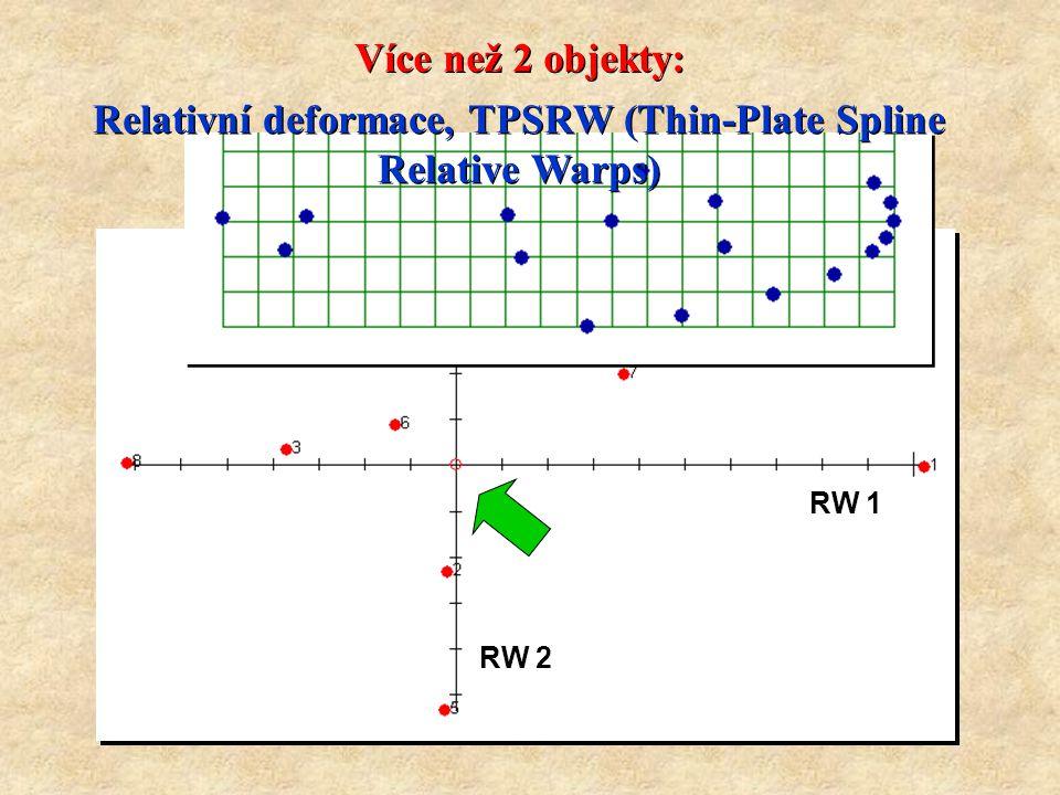 RW 1 RW 2 Relativní deformace, TPSRW (Thin-Plate Spline Relative Warps) Relativní deformace, TPSRW (Thin-Plate Spline Relative Warps) Více než 2 objekty: