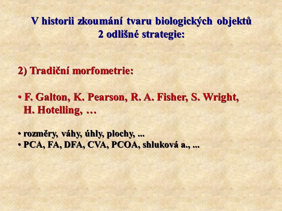 OBRAZOVÝ PROSTOR: p – rozměrů, k – bodů; n = pk Prokrustes – krok 1