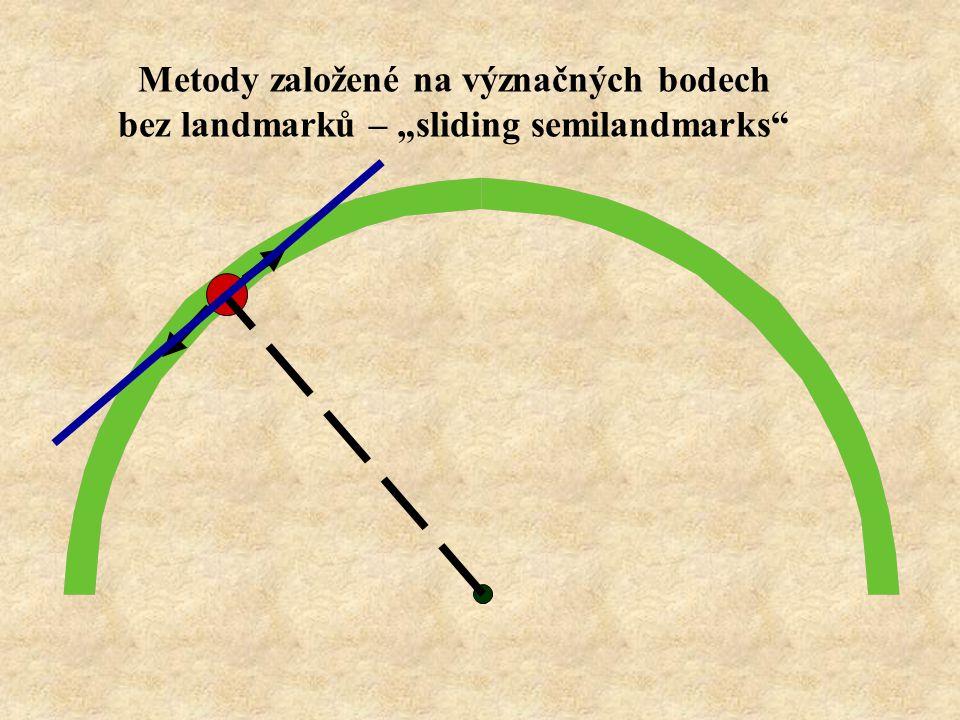 "Metody založené na význačných bodech bez landmarků – ""sliding semilandmarks"