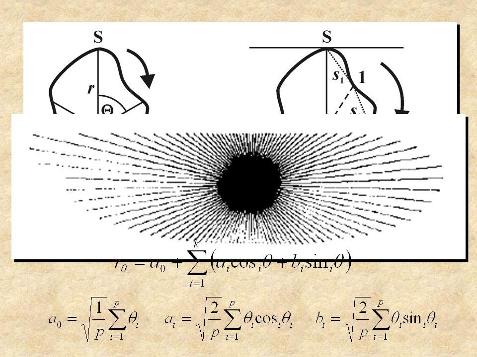 x y Eliptická Fourierova analýza